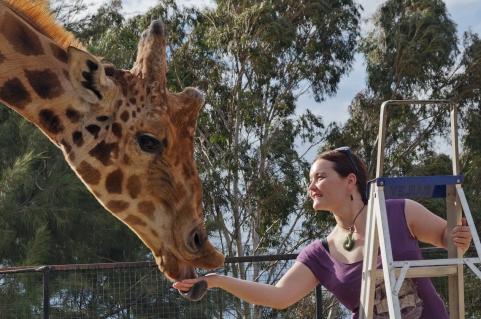 Bex and giraffe